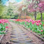 Piękny oraz schludny ogród to zasługa wielu godzin spędzonych  w jego zaciszu w trakcie pielegnacji.